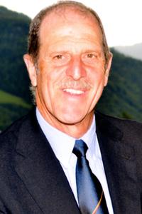Heinrich Menardi